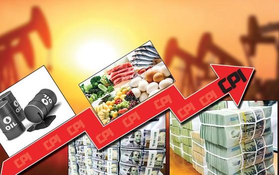 Kinh tế Việt Nam 2019 - Phải thích ứng những biến động  ảnh 1