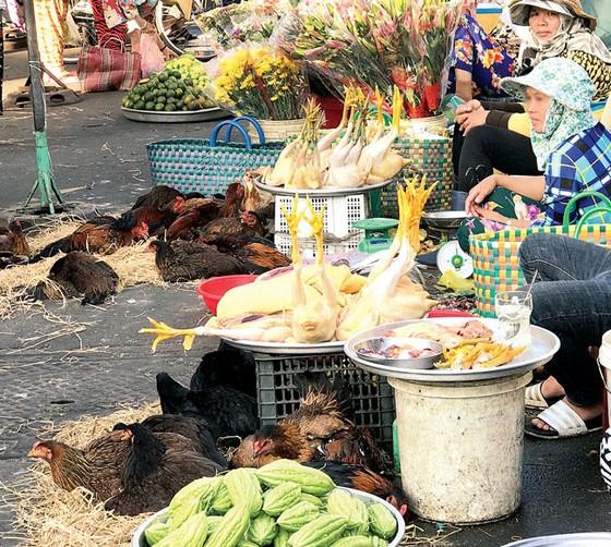 """Cuối năm """"nóng"""" chuyện thực phẩm bẩn - Bài 1: Thực phẩm bẩn  bủa vây mùa giáp tết ảnh 1"""