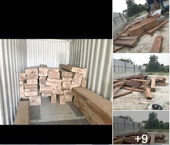 Ngang nhiên mua bán trái phép gỗ quý hiếm ảnh 2