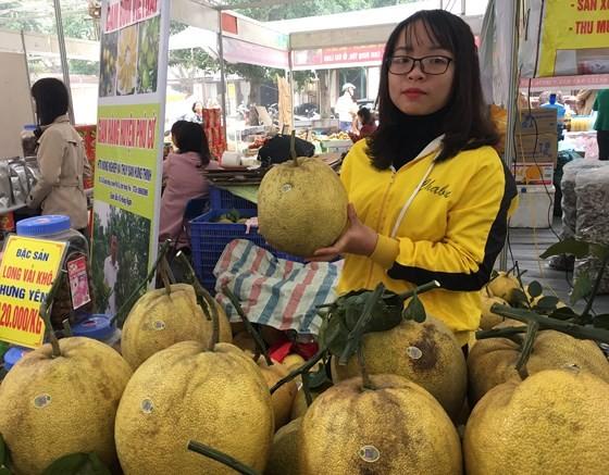 """Trăm loại đặc sản """"khoe hương"""" tại hội chợ xuân 2019 ảnh 2"""