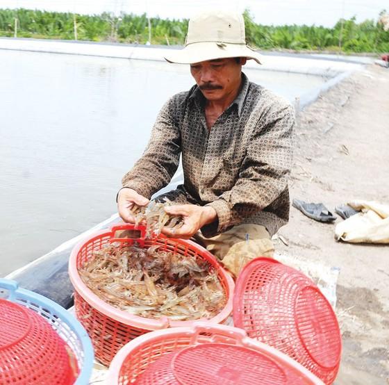 3 khó khăn chính kiềm hãm ngành thủy sản ảnh 1