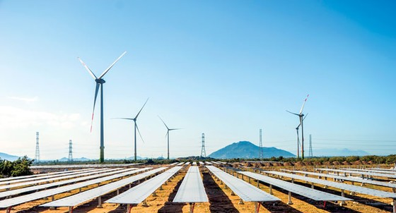 Solar power projects should not depend on bank loans ảnh 1