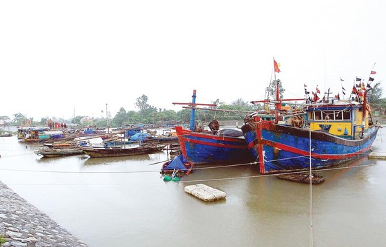 Bão số 2 giật cấp 11 đã đổ bộ vào các tỉnh từ Hải Phòng đến Nam Định ảnh 2