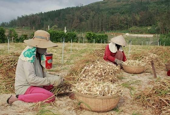 Ngành có thu nhập thấp nhất là ngành nông, lâm nghiệp và thủy sản