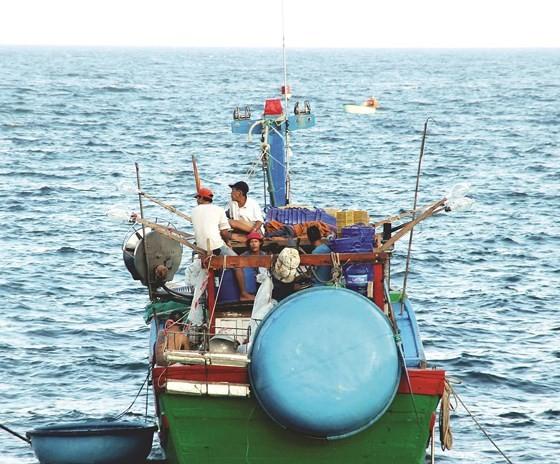Làng chài bên biển hoang ảnh 6