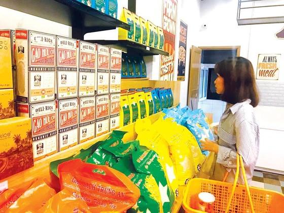 Xuất khẩu gạo -Tìm thị trường mới ảnh 2