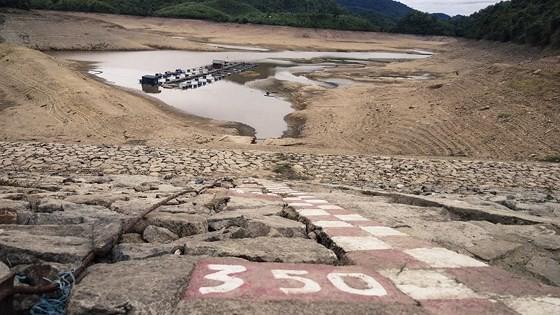 Cây lương thực khô cháy, chết dần vì hạn hán kéo dài ở khu vực Trung Trung bộ ảnh 3
