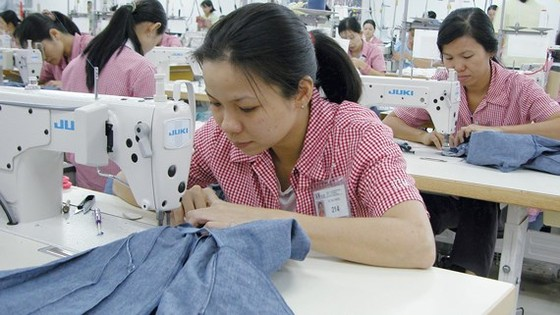 May tại Công ty IGM (Nhật Bản) ở quận 7, TPHCM. Ảnh: CAO THĂNG