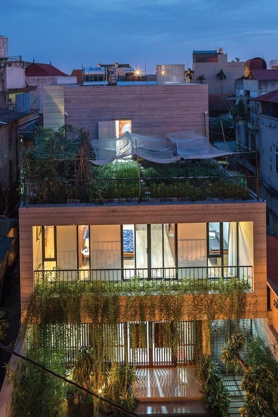 Không gian xanh cho nhà phố thị ảnh 4