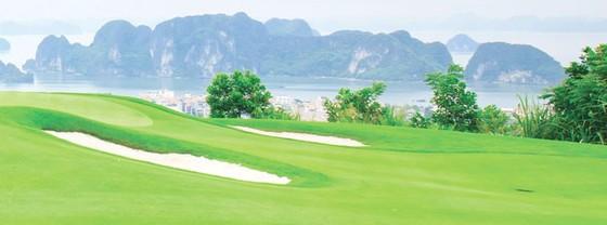 Đầu tư sân golf gắn với chiến lược kinh doanh FLC ảnh 2