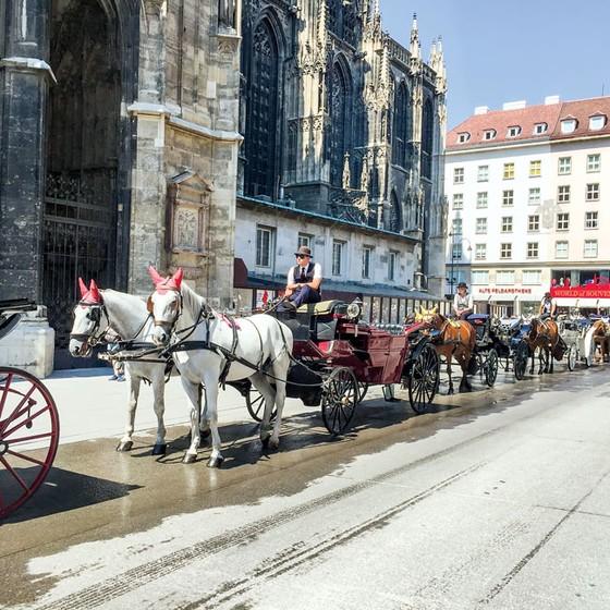 Vienna - viên ngọc sáng ảnh 2
