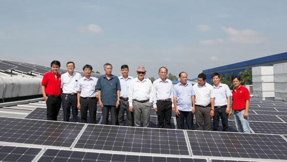 Bến Tre mời gọi Sao Mai đầu tư năng lượng mặt trời ảnh 1