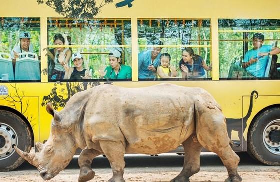 """Vinpearl Safari Phú Quốc: Trải nghiệm """"Tết mới"""", gắn kết thiên nhiên  ảnh 10"""
