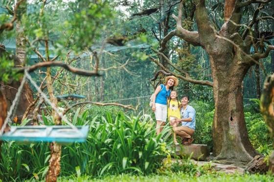 """Vinpearl Safari Phú Quốc: Trải nghiệm """"Tết mới"""", gắn kết thiên nhiên  ảnh 12"""