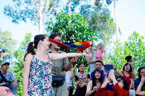 """Vinpearl Safari Phú Quốc: Trải nghiệm """"Tết mới"""", gắn kết thiên nhiên  ảnh 13"""