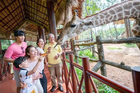"""Vinpearl Safari Phú Quốc: Trải nghiệm """"Tết mới"""", gắn kết thiên nhiên  ảnh 6"""