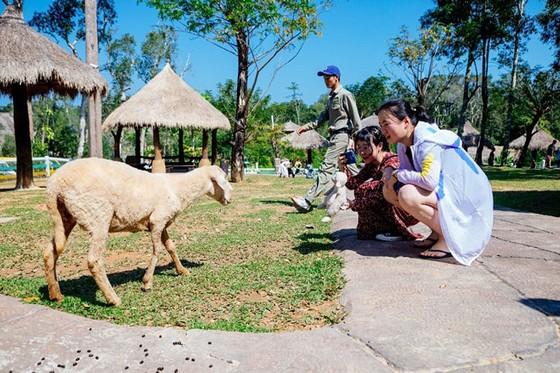 """Vinpearl Safari Phú Quốc: Trải nghiệm """"Tết mới"""", gắn kết thiên nhiên  ảnh 7"""
