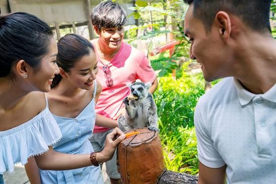 """Vinpearl Safari Phú Quốc: Trải nghiệm """"Tết mới"""", gắn kết thiên nhiên  ảnh 8"""