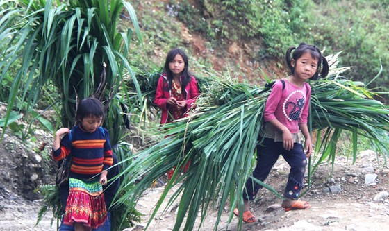 Trẻ em miền cao nguyên đá ảnh 4