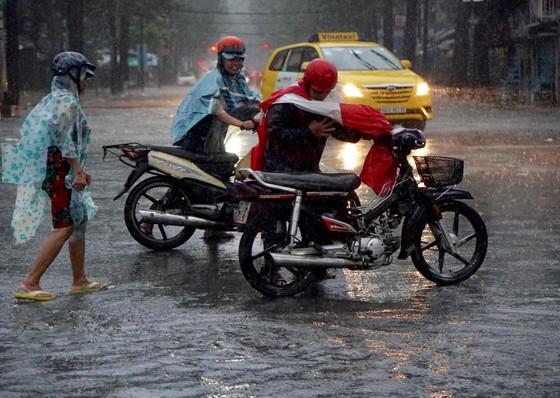 TPHCM mưa lớn, cây xanh bật gốc ngã đè người đi đường tử vong ảnh 11