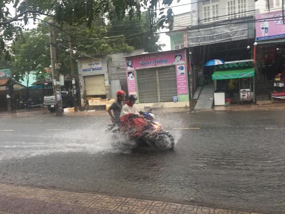 TPHCM mưa lớn, cây xanh bật gốc ngã đè người đi đường tử vong ảnh 17