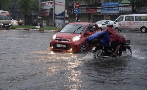 TPHCM mưa lớn, cây xanh bật gốc ngã đè người đi đường tử vong ảnh 8