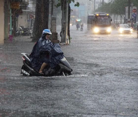 TPHCM mưa lớn, cây xanh bật gốc ngã đè người đi đường tử vong ảnh 9