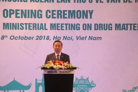 Ma túy vào Việt Nam tăng đột biến ảnh 1