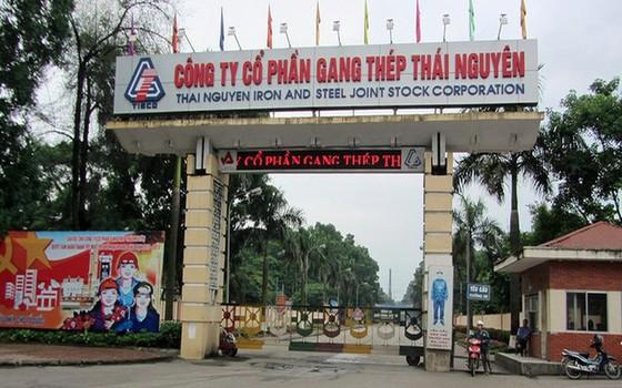 Kiến nghị điều tra nhiều nội dung sai phạm tại Công ty Gang thép Thái Nguyên ảnh 1