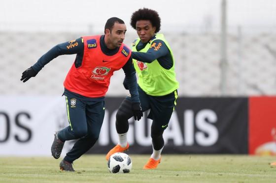 """World Cup 2018: Willian đang đạt """"phong độ của cuộc đời"""" ảnh 1"""