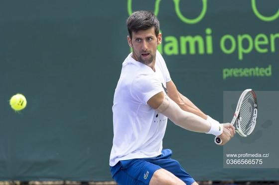 """Miami Masters 2018: Tránh nói về Federer, Djokovic tuyên bố: """"Tôi không còn đau nữa"""" ảnh 1"""