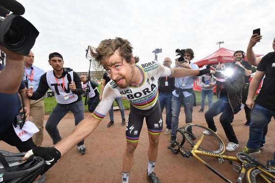 """Xe đạp: Gaviria, Sagan và Cavendish – """"tam hổ"""" tranh phong ở San Juan ảnh 1"""