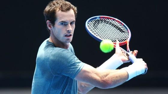 Australian Open 2019: Federer, Nadal và Murray chung 1 nhánh đấu ảnh 2