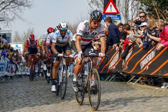Xe đạp: Nằm ngoài tốp 10 Tour of Flanders, Sagan than vãn anh không còn như xưa ảnh 4