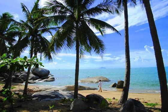 碧海、沙灘和椰樹 構成寧靜的美 ảnh 2