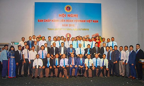 Long trọng kỷ niệm 80 năm thành lập võ Việt (Vovinam) ảnh 1