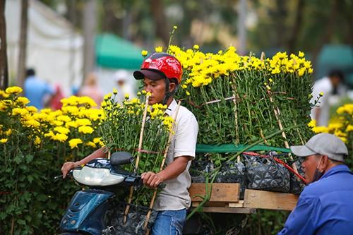 Chiều 29 Tết, người dân TP Hồ Chí Minh đổ xô đi mua hoa ảnh 5