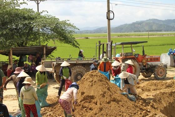 Vỡ đê, hàng trăm người dân trầm mình cứu lúa ảnh 4