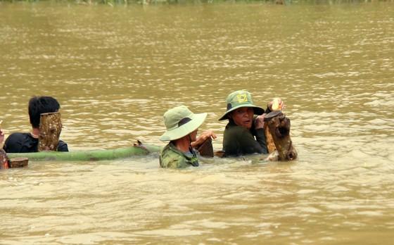 Vỡ đê, hàng trăm người dân trầm mình cứu lúa ảnh 8