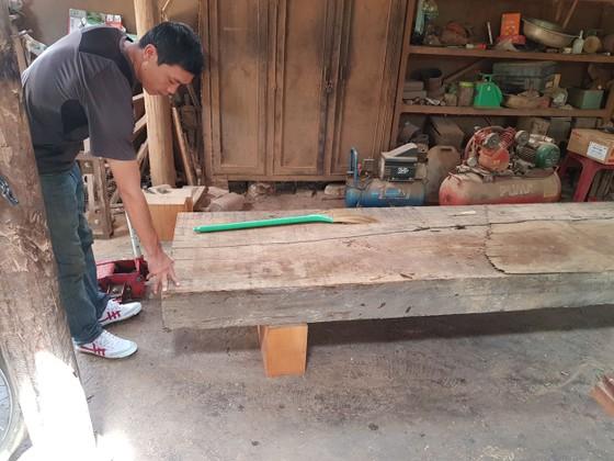 Phát hiện thêm nhiều điểm tập kết gỗ 'khủng' tại Đắk Lắk ảnh 8
