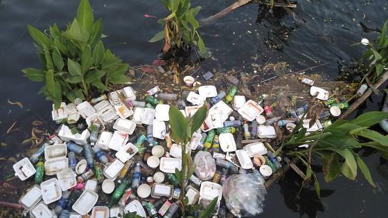 Đà Nẵng: Công viên 29 tháng 3 ngập rác sau tết ảnh 5