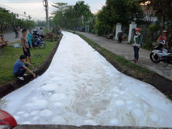 Kinh hoàng cảnh cá chết trắng kênh thủy lợi, nghi nhiễm độc thuốc diệt cỏ ảnh 1