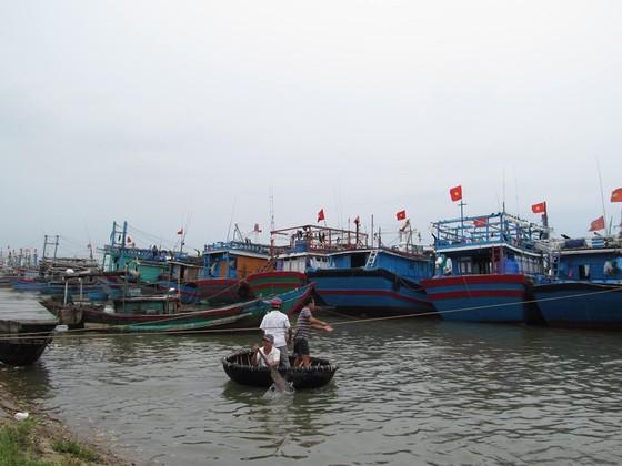 Các tỉnh miền Trung nỗ lực ứng phó bão số 4  ảnh 2