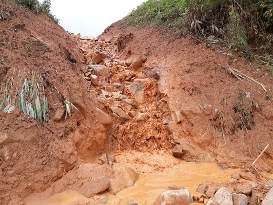 Kon Tum: Đường 482 tỷ xuyên rừng bị sạt lở nghiêm trọng, gây tắc đường ảnh 3