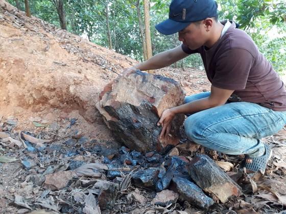 Gia Lai: Mỏ quặng đóng cửa, dân khoét đồi, đào đất khai thác lậu ảnh 3