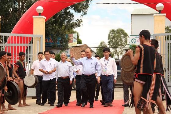 Thủ tướng Nguyễn Xuân Phúc dự khánh thành trung tâm nghiên cứu sâm Ngọc Linh ảnh 3