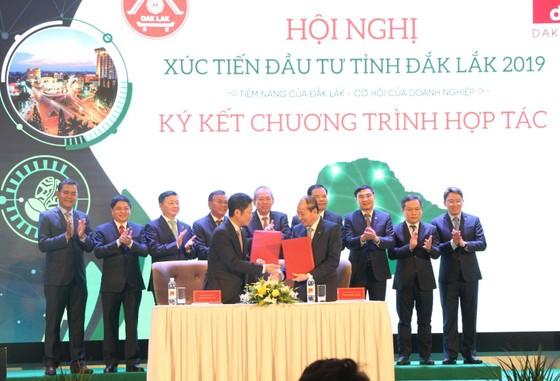 Phó Thủ tướng Trương Hòa Bình: Không phát triển các dự án năng lượng tái tạo trên đất rừng ảnh 2