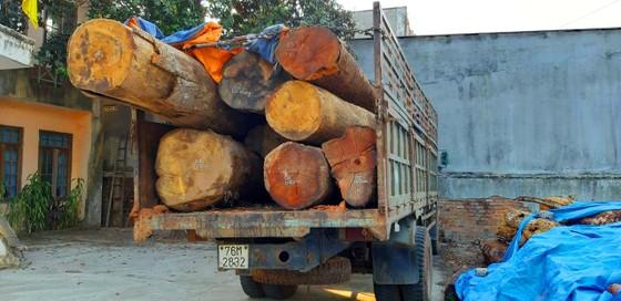 """Bắt thêm xe chở gỗ lậu từ """"cổng trời""""  Đắk Long ảnh 1"""
