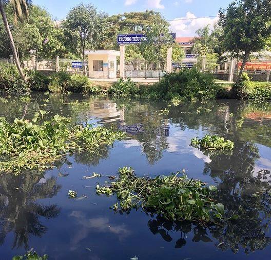 Hậu Giang: Hơn 6.000 hộ dân chờ nước sạch do nước sông ô nhiễm nghiêm trọng ảnh 1
