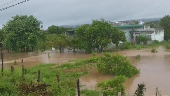 Mưa lớn, nhiều địa phương ở Đắk Lắk bị cô lập, phải di dời dân ảnh 3